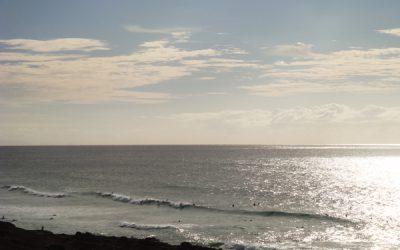 SUP Board Surf Fuerteventura